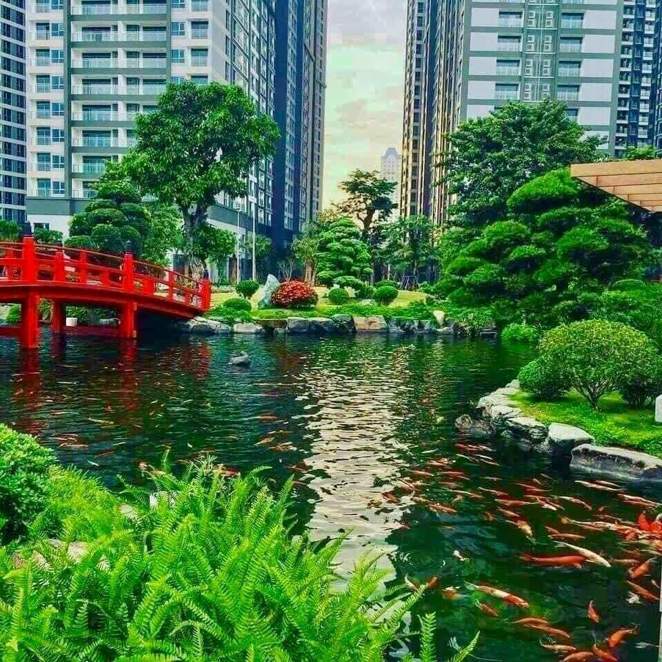 Hồ cá Koi Vinhomes Grand Park